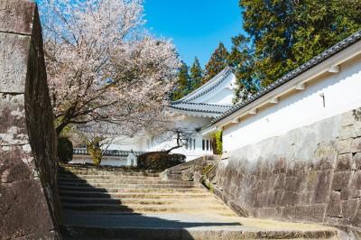 歴史や神社仏閣が好きな人限定パーティー
